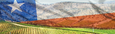 De constant hoge kwaliteit van Chileense wijnen